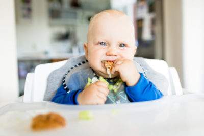 Baby Led Weaning and the Satter Models-0